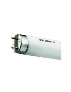 Fluorescente T8 38W 4000K F18W/33-640 de Sylvania