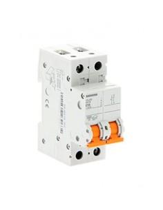 Interruptor automático para viviendas, bipolar 40A. 5SJ6240-7FC de Siemens