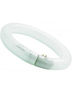 Fluorescente circular Luxline T9 de Sylvania